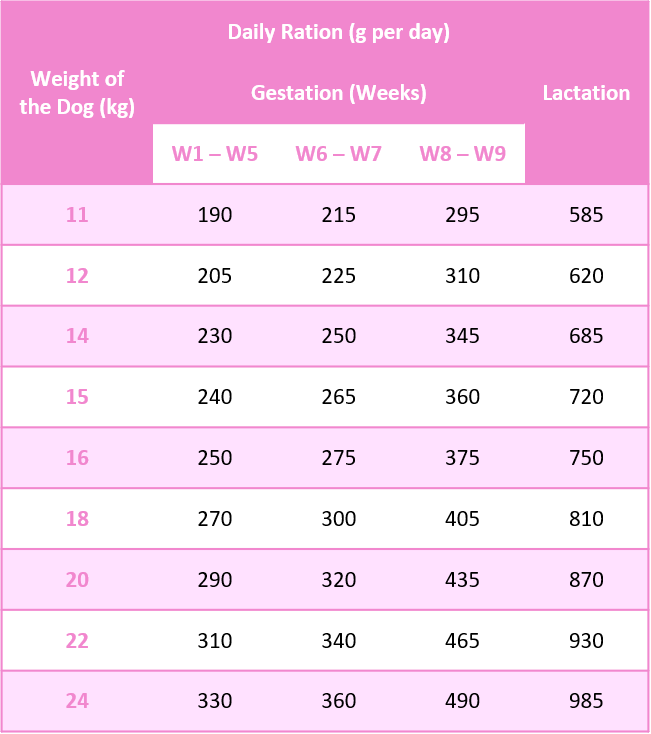Medium Pregnant or Lactating Feeding Guide