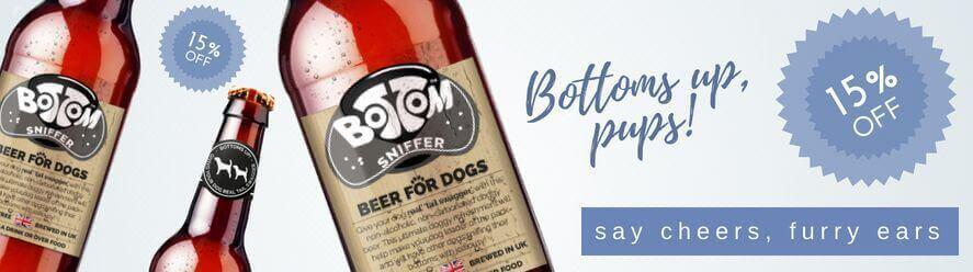 doggy beer summer drinks dogs