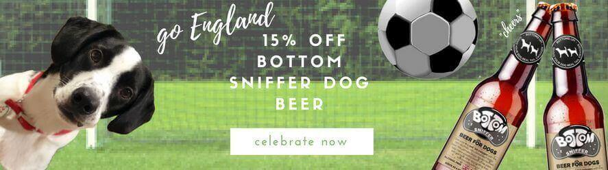 beer, dogs, doggy beer, bottom sniffer