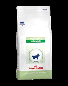 Royal Canin Feline Pediatric Weaning - Dogtor.vet