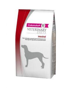 Eukanuba Canine Intestinal - Dogtor.vet
