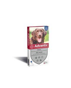 Advantix grand chien (25 - 40 kg) - 4 pipettes- La Compagnie des Animaux