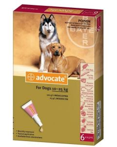 Advocate Large Dog Dogtor.vet