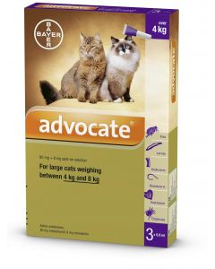 Advocate 80 for Large Cats (pack of 6)