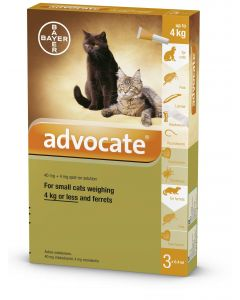 Advocate 40 for Small Cats & Ferrets (pack of 6)