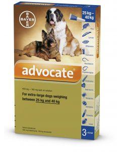 Advocate XL Dog - Dogtor.vet