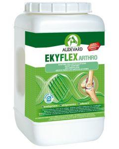 Audevard Ekyflex Arthro - Dogtor.vet