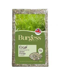 Burgess Excel Fresh Forage 1kg