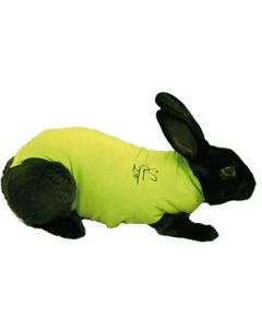 Medical Pet Shirt Rabbit - Extra Small