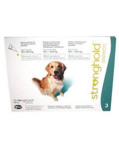 Stronghold Large Dog - Dogtor.vet