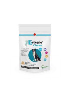 Zylkene Chews for Medium and Large Dogs - Dogtor.vet