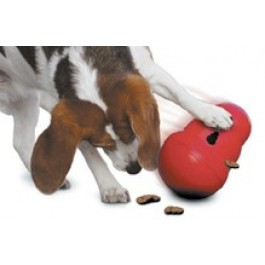 Kong Wobbler Large - Dogtor