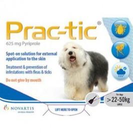 Practic Spot-on - Dogtor.vet
