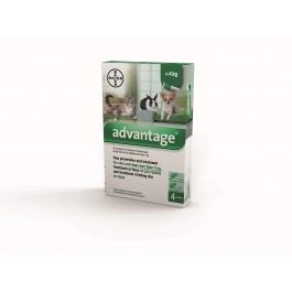 Advantage 40 - Dogtor.vet