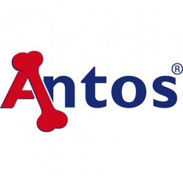 Antos Antler - Dogtor.vet