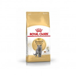 Royal Canin Chat British Shorthair Adult 2 kg