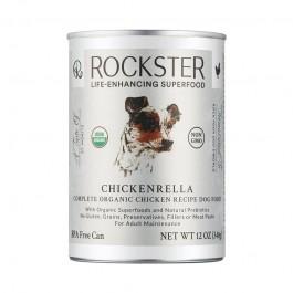Rockster - Dogtor.vet