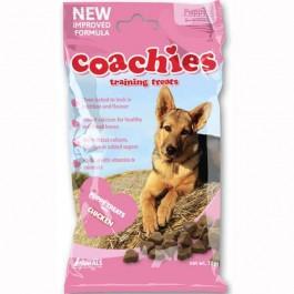 Coachies Puppy - Dogtor.vet