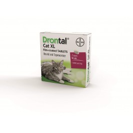 Drontal XL Tablets for cats >6kg (singles) - Dogtor