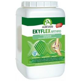 Ekyflex Arthro granulés 2kg - Dogtor