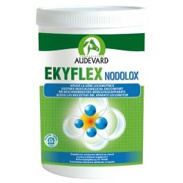Audevard Ekyflex Nodolox - Dogtor.vet