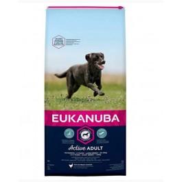 Eukanuba Chien Active Adult Grande Race au poulet 15 kg - Dogtor