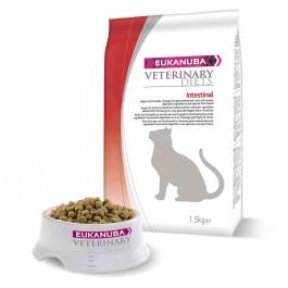 Eukanuba Feline intestinal - Dogtor.vet