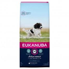 Eukanuba Chien Active Adult Moyenne Race au poulet 15 kg - Dogtor