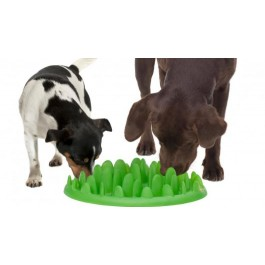 Green Slow Dog Feeder - Dogtor