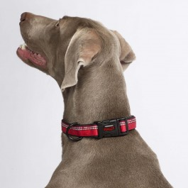 HALTI Collar Red - Medium - Dogtor