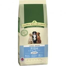 James Wellbeloved Junior Dog Large Breed Fish & Rice 15kg