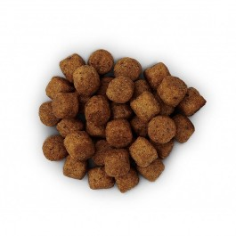 Hill's Prescription Diet Canine J/D 12 kg - Dogtor