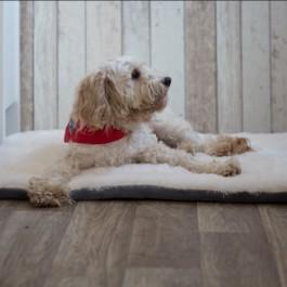 Gor Pets Nordic Grey Crate Mat - Small - Dogtor
