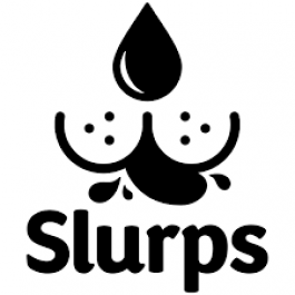 Slurps Organic Ready-to-Use Drink for Dogs - Beef - Dogtor