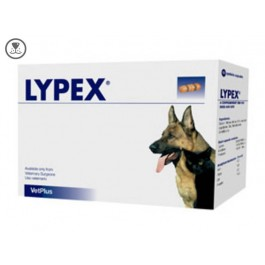 Lypex Capsules for Cats & Dogs (pack of 60)