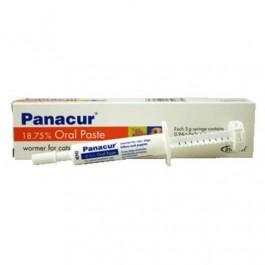 Panacur Paste - Dogtor.vet