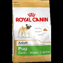 Royal Canin Adult Pug - Dogtor.vet