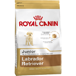 Royal Canin Labrador Junior 12 kg - Dogtor