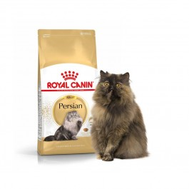 Royal Canin Adult Persian - Dogtor.vet