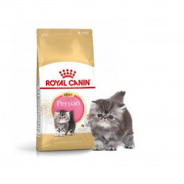 Royal Canin Kitten Persian - Dogtor.vet