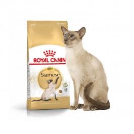 Royal Canin Adult Siamese - Dogtor.vet