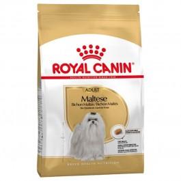 Royal Canin Bichon Maltais Adult 1.5 kg - Dogtor
