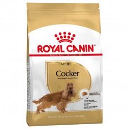 Royal Canin Cocker Adult 12 kg - Dogtor
