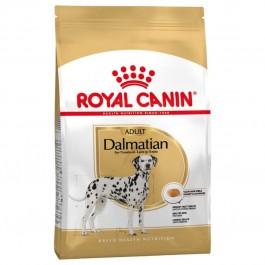 Royal Canin Dalmatien Adult 12 kg - Dogtor