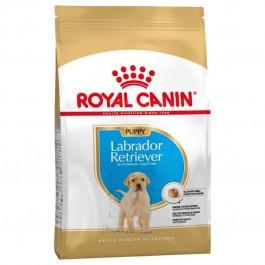 Royal Canin Puppy Labrador - Dogtor.vet