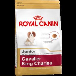 Royal Canin Cavalier King Charles Junior 1.5 kg - Dogtor