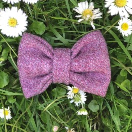 Dunham Canine Bow by 'Maddie Makes' - Dogtor