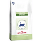 Royal Canin Feline Pediatric Growth - Dogtor.vet