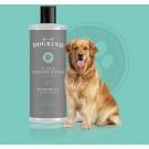 For All Dogkind Everyday - Dogtor.vet