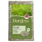 Burgess Excel Feeding Hay 1kg